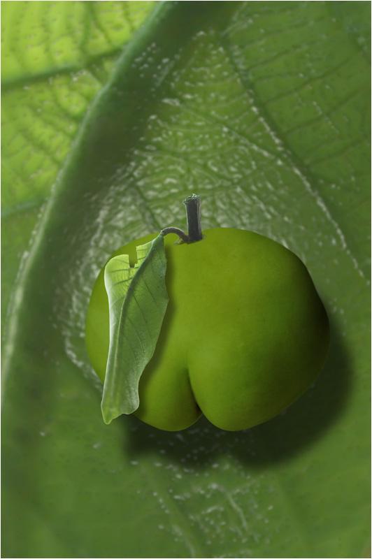 Sweet Leaf - 0083 - Konstnär: Bengt Grönkvist