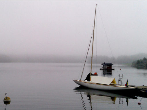 In The Misty Morning